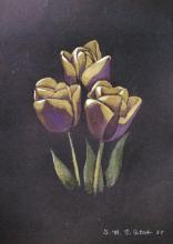 Pastelli a cera su carta nera 'Tulipani'